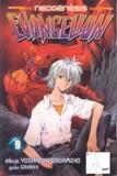 Evangelion Tomo 17 Manga