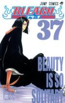 Tomo 37 de Bleach