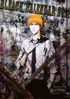 Bleach Calendario 2011 Anime
